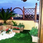 Roof Garden - 1